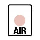APL-IPAD AIR 10.9 256GB O 4G